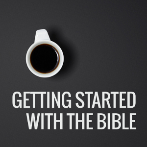 Getting started with the Bible